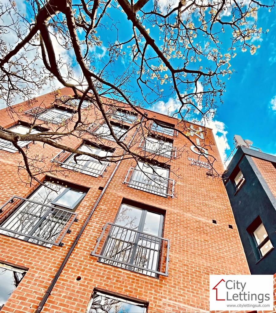 Brand new 7 bedroom student apartment