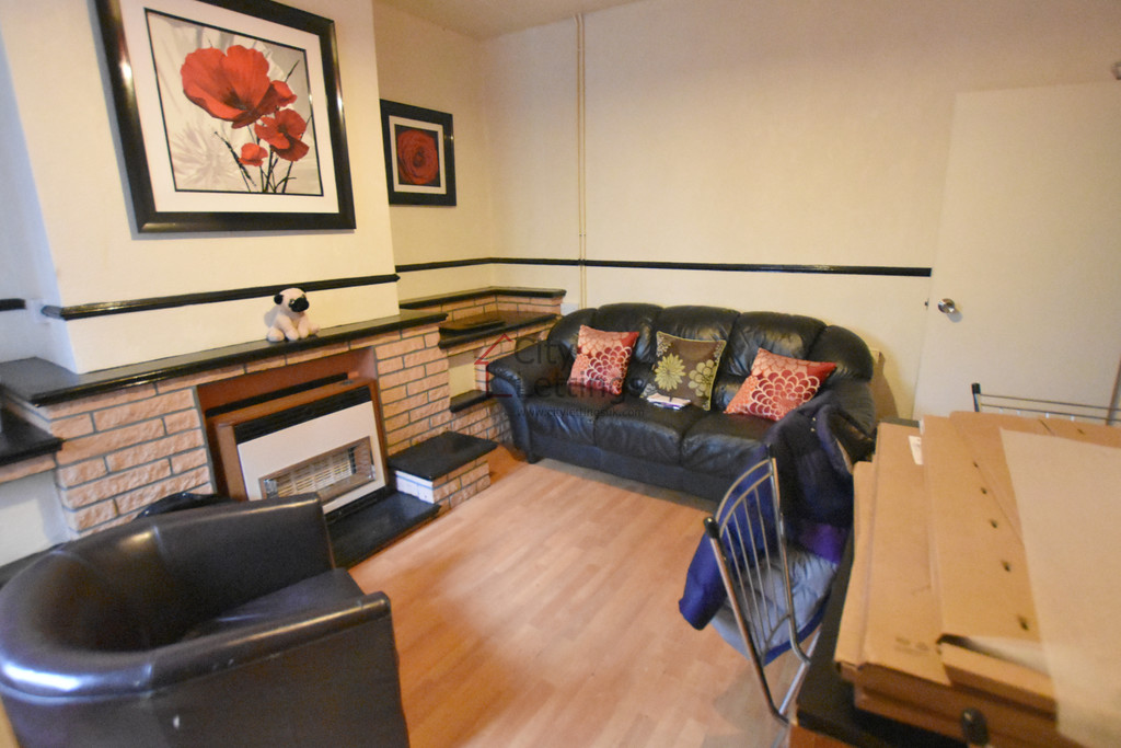 Large 4 double bedroom student house